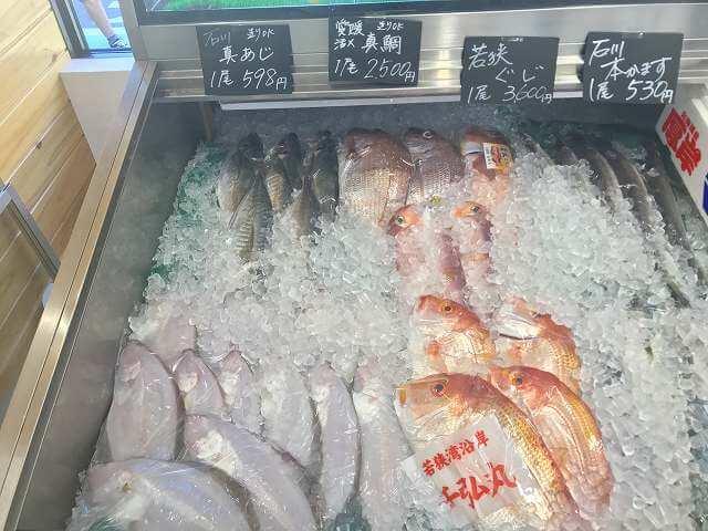 当日獲れたての新鮮な魚